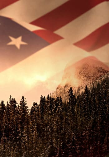 American flag image over a sunny sky above hundreds of pine trees