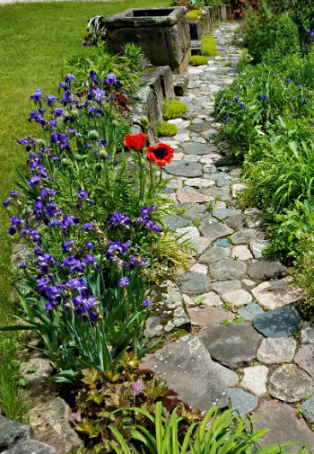 Stone path lined with green plants and purple and red flowers